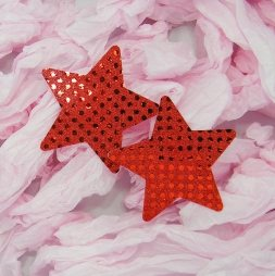 Star Nipple cover