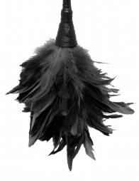 PIPEDREAM FETISH FANTASY  FRISKY FEATHER DUSTER BLACK